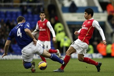 eduardo da silva ankle injury arsenal birmingham